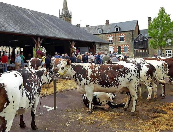 Comice agricole @ Place du Champ de Foire