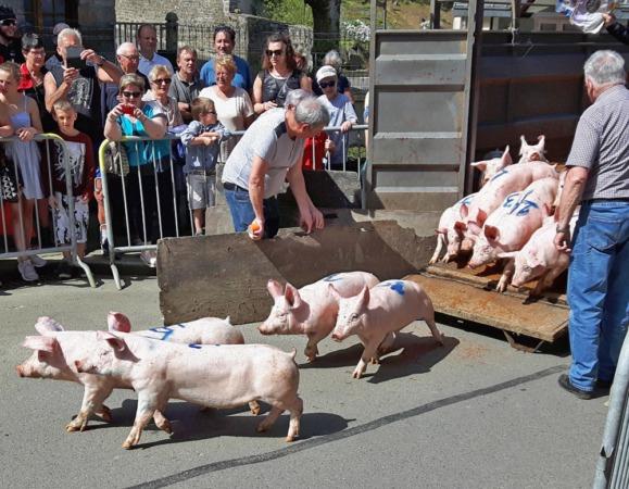 Tiercé aux cochons @ Rue Beauregard